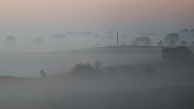 Morgondimmor/Österlen