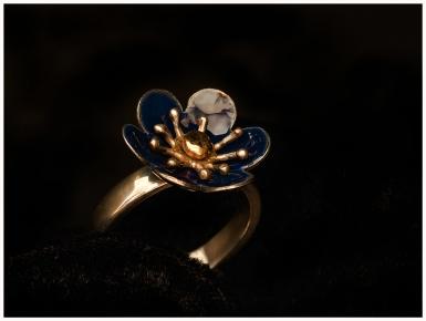 Ring i silver/emalj